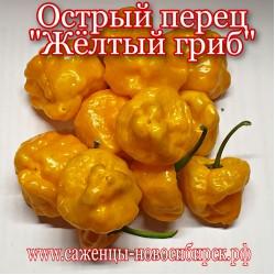"""Семена острого перца """"Жёлтый гриб"""""""
