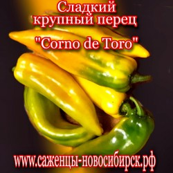 "Семена сладкого  жёлтого перца"" Corno de Toro"""