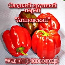 """Семена сладкого  крупного перца сорта  """"Агаповский"""""""