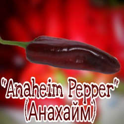 Перчик острый Anaheim Pepper ( Анахайм)