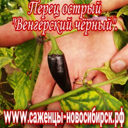 """Перец острый """"Венгерский чёрный"""""""