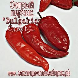 """Семена острого перчика """"Bulgarian Carrot"""""""